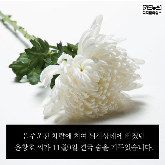 [카드뉴스] 윤창호 법
